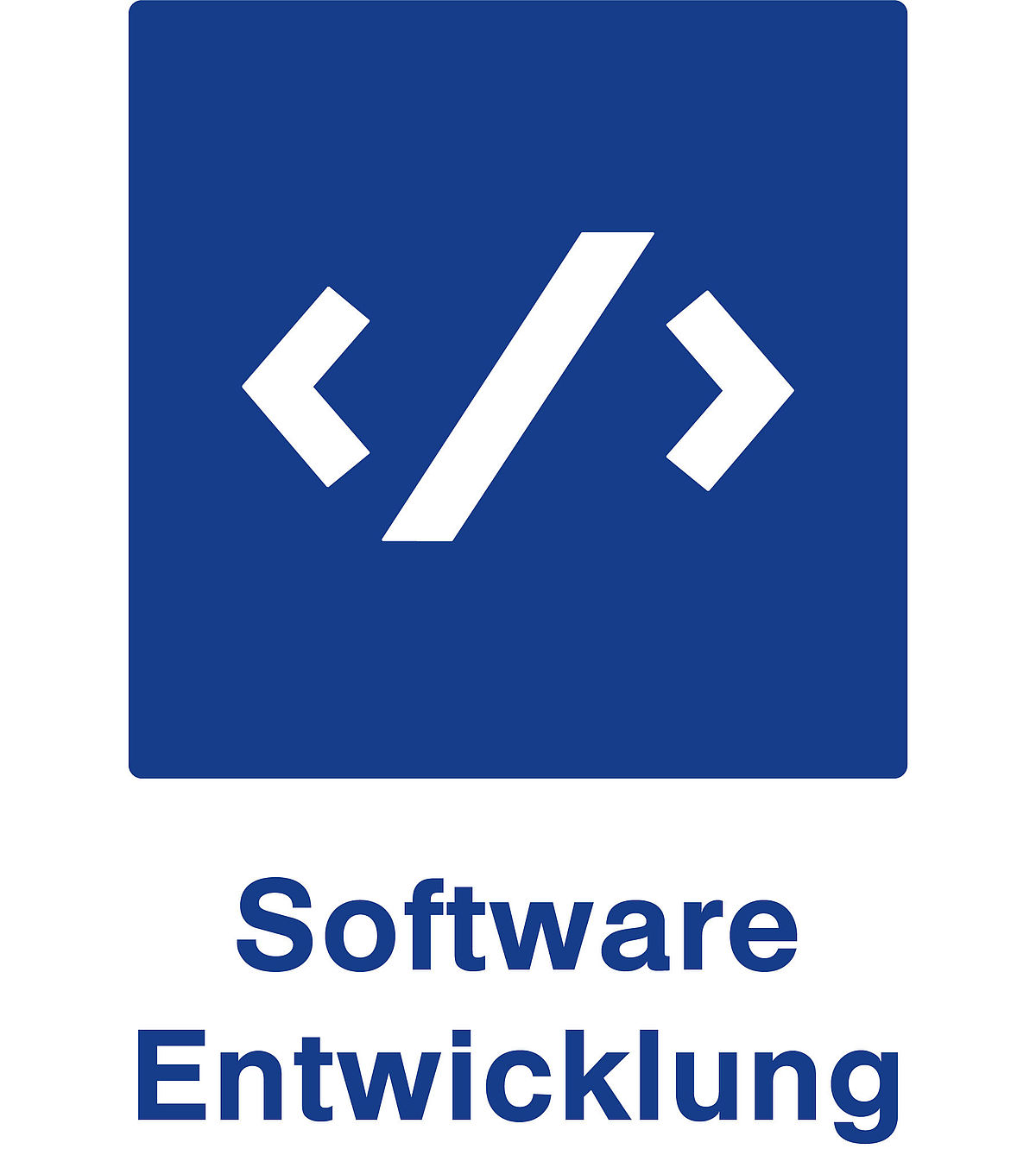 Softwareentwicklung Icon